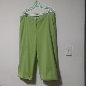 Scott Taylor Petite14 Capris pants green 💚